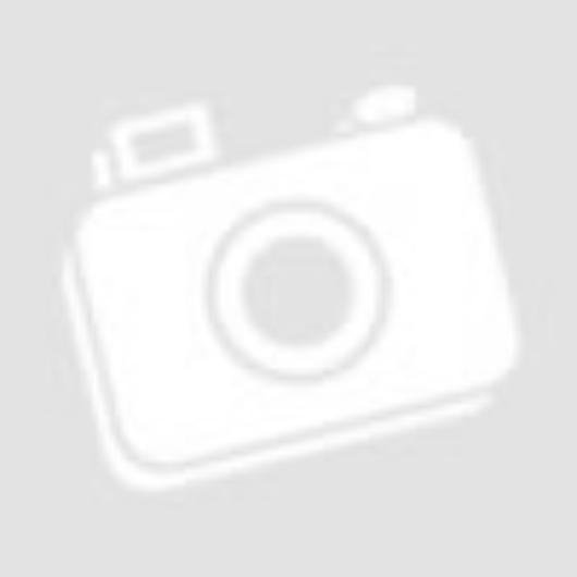 Kék Márvány mintás PC (műanyag) tok arany pelyhekkel, szilikon kerettel, iPhone Xs